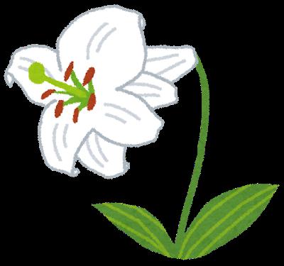flower_yuri